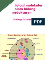 Presentation Peran Biologi Dibidang Kedokteran KBK Blok 1