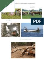 Actividades Ecomomicas a Las Que Se Dedican Los Guatemlatecos