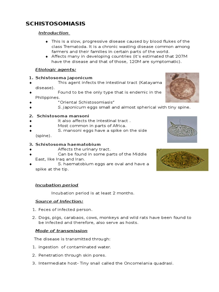 Schistosomiasis signs and symptoms. Schistosomiasis incubation period