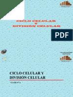 Ciclo Celular y Divisin 5400956