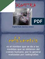 exposicion-de-cefalometria-paolitapao.ppt
