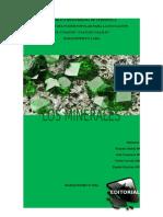 Revista-Minerales (2)