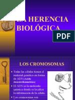 La herencia biologica.ppt