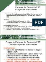 2. Evolucion Certificaciones Forestal Celco