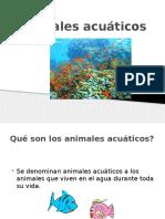 Animales Acuáticos 2