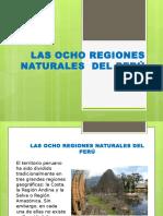 las  8 regiones naturales  del peru