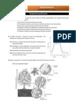 BioGeo10 Ficha de Trabalho 19-Transporte Plantas2