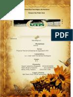 Proyecto Final de La Empresa S.W.R Grupal GEII (1)