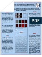 Sc Iso, Charct Ash 2005 Poster