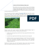 Aplikasi Tanaman Penutup Tanah
