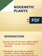Cynaogenic Plants
