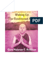 Waking Up the Conditioned Mind - Beyond Appearances Series - Guru Nalaram c Rolliman