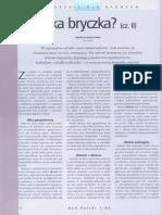 POW_Jaka bryczka cz_2.pdf