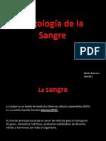 Histología de La Sangre (PP)