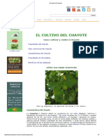 El Cultivo Del Chayote