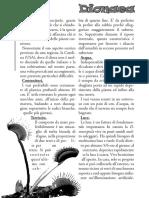 Dionaea.pdf