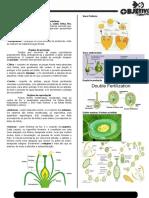 Angiospermas - Biologia
