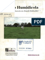 Pasto Humidicola Brachiaria Humidicola Rendle Schweickt