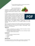 Practica Fisiotecnia Vegetal