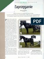POW_Zaprzęganie.pdf