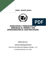 11000272461Doc Final Consultoria UNIFEM C.Z.2