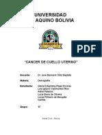 Cancer de Cuello de Uterino Udabol