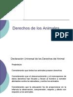 Derechos Delos Animales