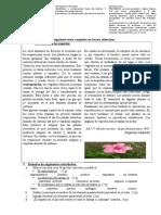Eval.texto Expo.doc Tema 2 (2)