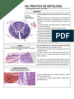 Guía Parcial Práctico de Histología Nervioso