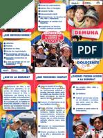 TRIPTICO Y CALENDARIO DEMUNA 2015