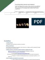 evidenceofevolutiontaskcards