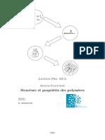 Structure Et Proprietes Des Polymeres