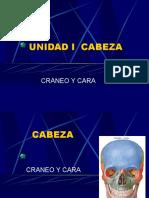 HUESOS  CRANEALES