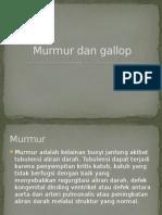 Murmur Dan Gallop