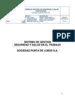 Sistema de Gestión de Seguridad y Salud en El Trabajo SPL