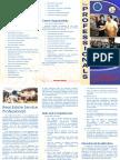 Philippine Real Estate Service Primer