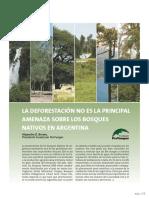La Deforestación No Es La Principal Amenaza Sobre Los Bosques Nativos en Argentina