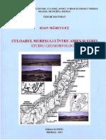 Culoarul Mureșului între Arieș și Strei. Studiu geomorfologic.pdf