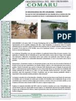 Tragedia ambiental que se vive por derrame de gas líquido en la cuenca del río Urubamba ha causado la muerte de peces y contaminación de río Paratori