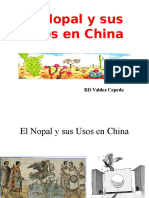 China Nopal.ppt