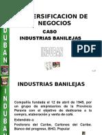 proyecto induban