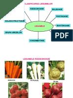 0_legumele.ppt