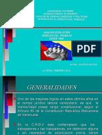 EVOLUCION HISTORICA DEL DERCHO DEL TRABAJO DESDE 1998.ppt
