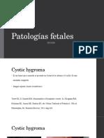 patologias fetales