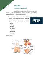 SISTEMA RESPIRATORIO.pdf
