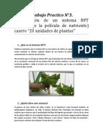 Trabajo Practico N°3 (Construcción de un sistema NFT casero)