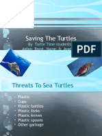 saving the turtles pp
