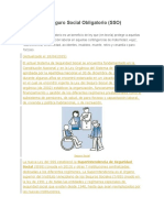 Cálculo Del Seguro Social Obligatorio