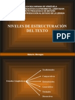 Niveles de Structuracion Del Texto Video II