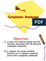 Cytoplasmic Membrane of Prokaryotes